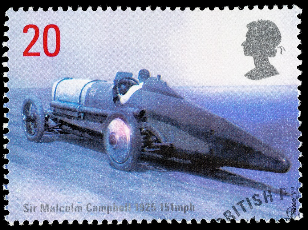 Blue Bird Stamp